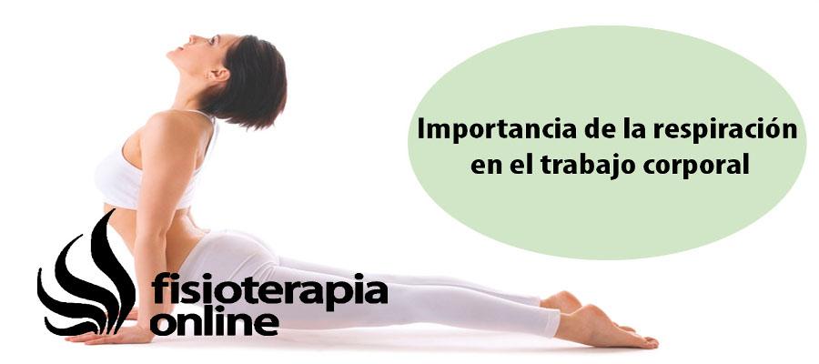 Acuerdo de colaboración con Fisioterapia-online.com