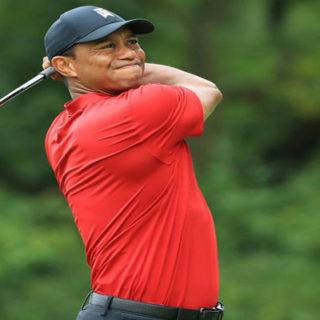 Los bíceps de Tiger Woods