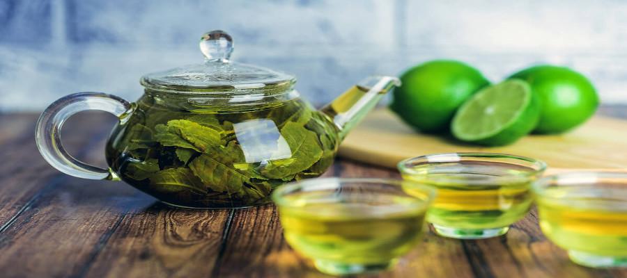 Té verde, también para deportistas